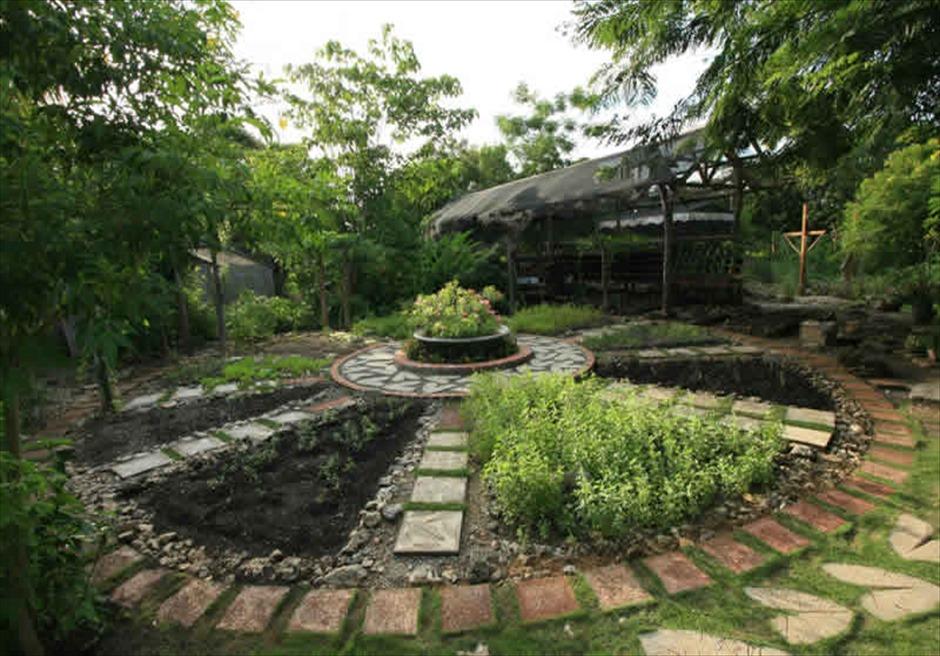 アマレラ・リゾート・ボホールのハーブ&ベジタブル・ガーデン