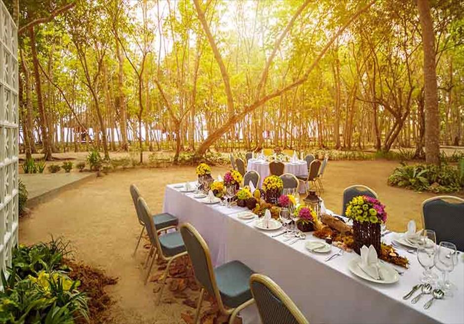 ボホール島サウス・パーム・リゾートのガーデン・パーティー・イメージ