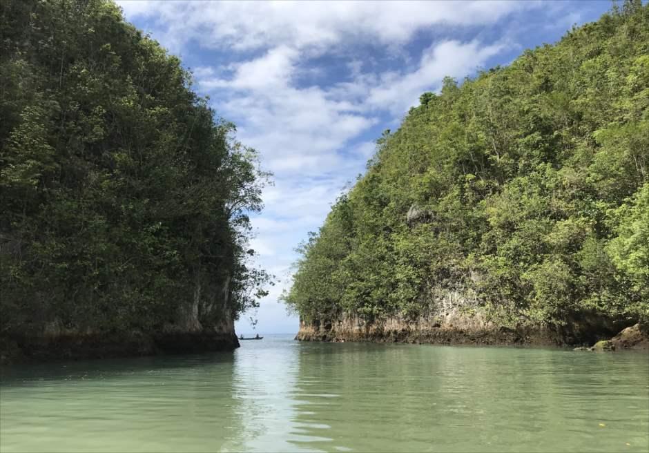 セブ島前撮り ボタニカル ウェディングフォト撮影 アロギンサン